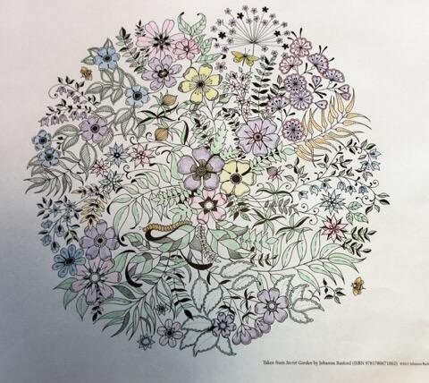 ひみつの花園 塗り絵を実際に塗った画像