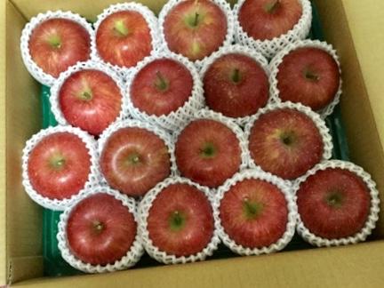山形県天童市から届いたりんご16個