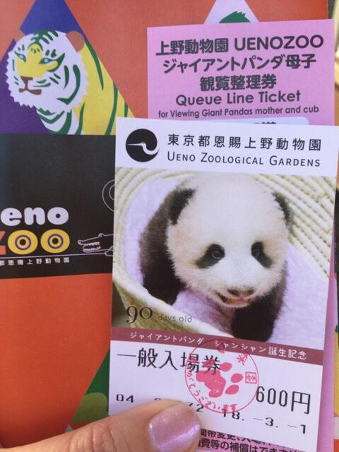 上野動物園ジャイアントパンダ母子観覧整理券