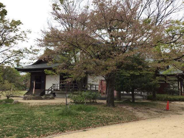 大阪迎賓館と桜
