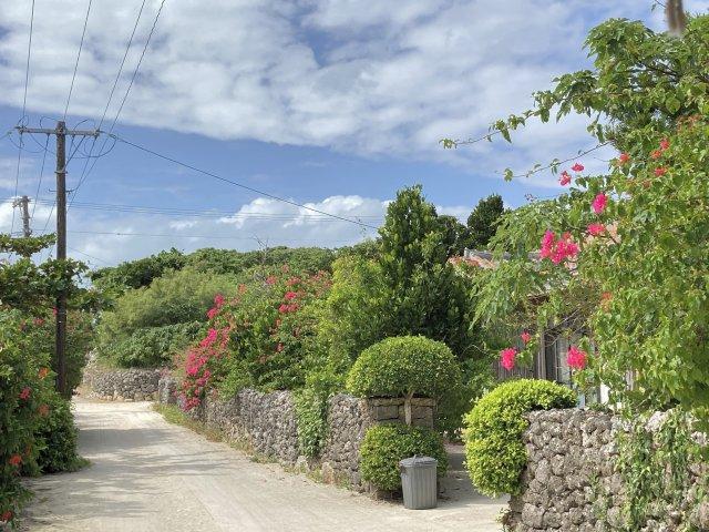 竹富島の景色