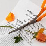 離婚して自由になりました。持ち家で専業主夫(専業主婦)と同居していた場合に離婚に向けてとった行動とかかったお金(その1)